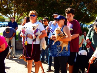 Annual Blessing of the Animals at St. Frances Cabrini
